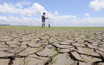Cancun Climate Agreement and Bangladesh: A step forward