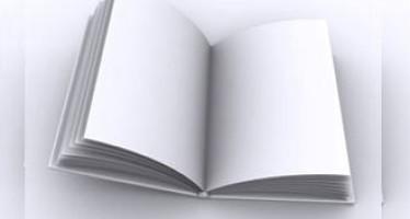 জেফরীর নায়ক ও এ কেইস অন করাপ্সন – দিলরুবা শাহানা