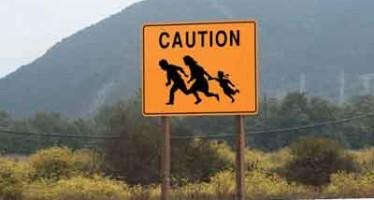 Migration (Ovibashon)