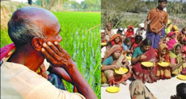 Global Rising Food Prices: What Bangladesh can do? By Barrister Harun ur Rashid