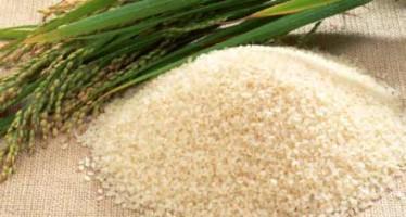 Saga of Indian rice to Bangladesh!